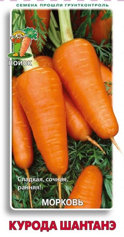 Сорта моркови сладкой и сочной